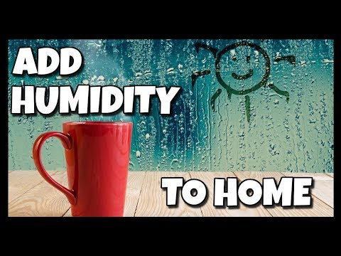 How To Add Humidity To Your Home 📍 How To With Kristin