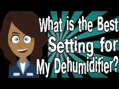 What is the Best Setting for My Dehumidifier?